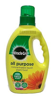 Miracle-Gro Grow All Purpose Liquid Plant Food Feed Concentrated Fertiliser 1L