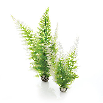 biOrb Winter Fern Pack of 2