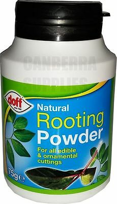 Doff Natural Rooting Powder For Edible Plants & Cuttings 75G - Dipping Pot Pack