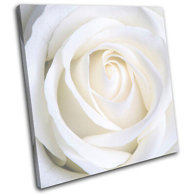 Rose Love Flowers Floral SINGLE CANVAS WALL ART Picture Print VA