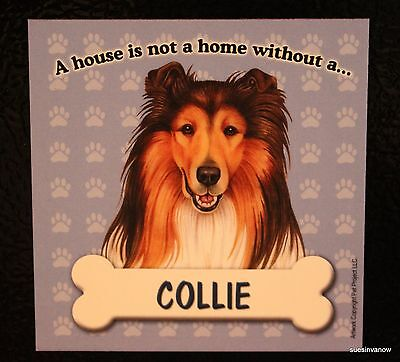 Collie Magnet Dog Car RV A House Is Not A Home Puppy Refrigerator File Cabinet