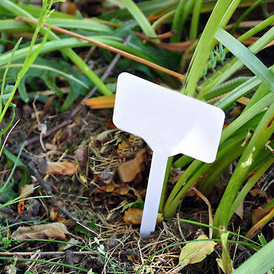 Large White Plastic Plant Garden Bed Markers Labels Tags - Pack Of 10 Gsp201