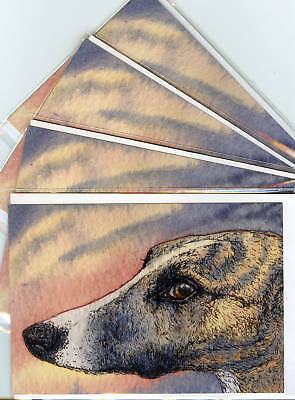 4 x whippet greyhound lurcher dog greeting cards sleek brindle by Susan Alison