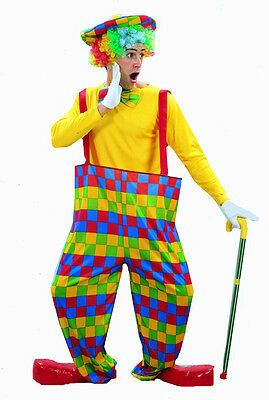 Adult Hooped Rainbow Circus Clown Fancy Dress Up Party Costume U00 198