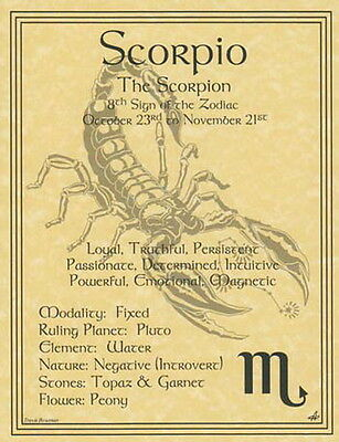 SCORPIO ZODIAC POSTER  Wicca Pagan Witch Witchcraft BOOK OF SHADOWS Astrology