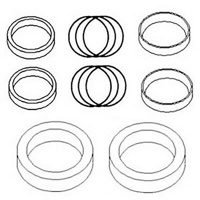 835833M92 Hydraulic Cylinder Seal Kit for Massey Ferguson Loader Lift 100