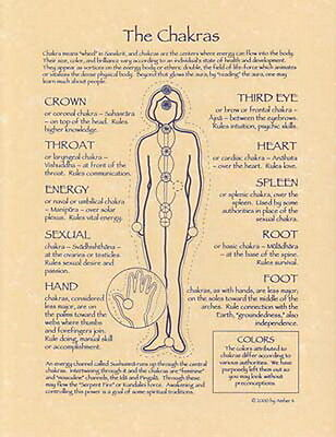 CHAKRAS POSTER A4 SIZE Wicca Pagan Witch Witch Goth BOOK OF SHADOWS