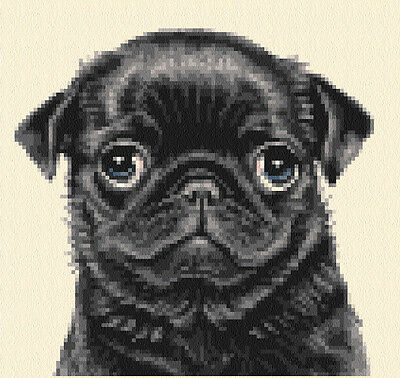 BLACK PUG puppy dog - complete counted cross stitch kit