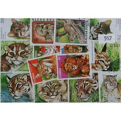 50 Wilcats stamps. All dufferent (557)
