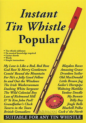 Instant Tin Whistle Popular Book/CD Tinwhistle Sheet Music Book with CD