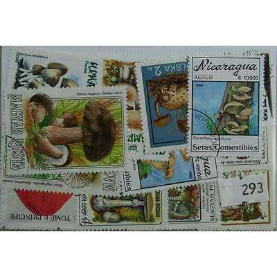 Mushrooms, 25 stamps, all different (293)