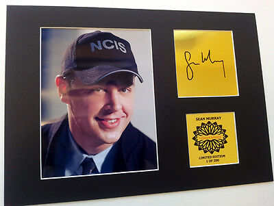 Sean Murray ( McGee)  NCIS  mounted quality signed 12 x  8 in limited edition