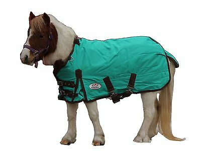 Derby Originals 1200D Mini Horse Winter Turnout Blanket with Limited Warranty!