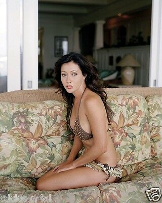 Shannen Doherty 8 x 10 / 8x10 GLOSSY Photo Picture