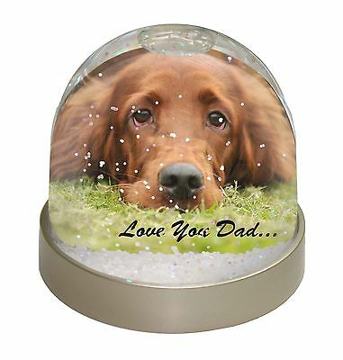 Red Setter Dpg 'Love You Dad' Snow Dome Globe Waterball Animal Christmas Gift