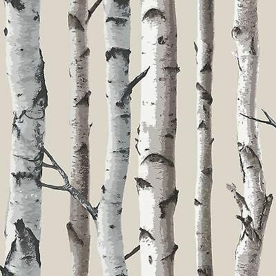 FINE DECOR BIRCH TREES 10m WALLPAPER - WHITE & SILVER