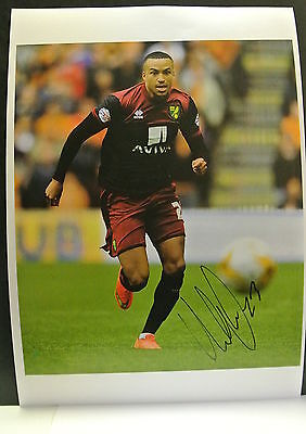 A 12 x 8 inch photo personally signed by Martin Olsson of  Norwich City