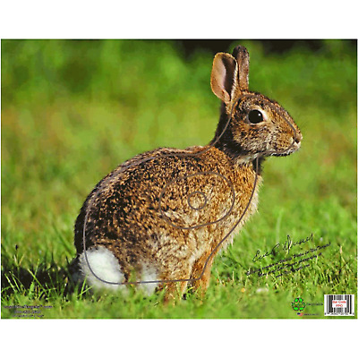 Rabbit Target Face - Thin Plastic Sheet - For Archery And Compound Bow Hunting
