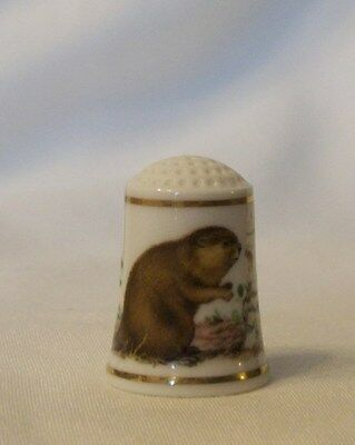 Franklin Mint Baby Animals of the World Thimble - North American Beaver