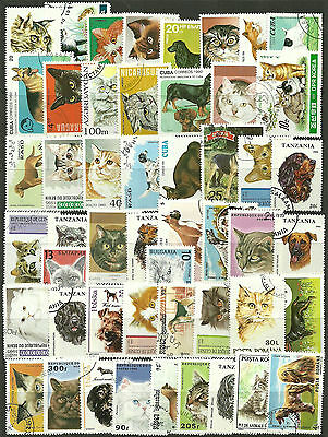 CATS and DOGS Collection Packet of 50 Different WORLD Stamps