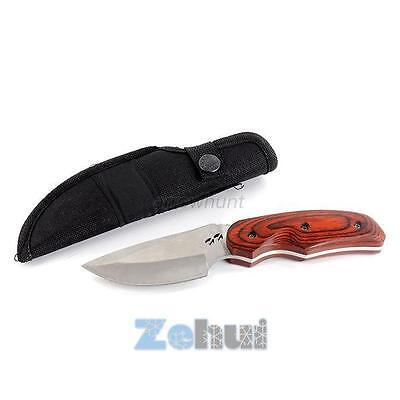 Portable Small Fixed Blade Outdoor Camping Hunting Fishing Survival Knife Steel