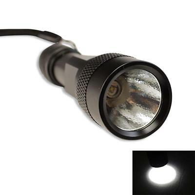 Brand New CREE P2 LED Flashlight Electronic Camping Torch Light Lamp AA 2A