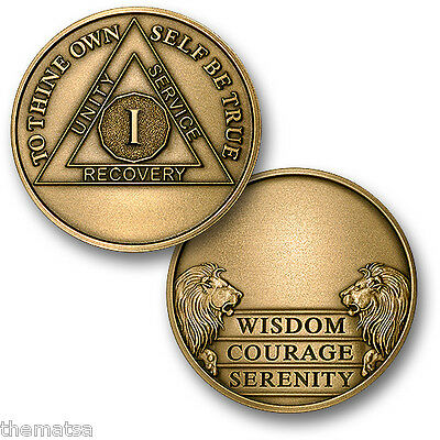 Aa Alcoholics Anonymous 1 Year Engravable  Recovery Sobriety Challenge  Coin