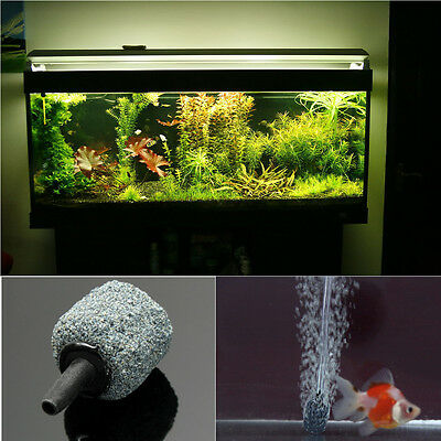 pierre à air bulle diffuseur oxygène barboteur pr Aquarium Poisson durable fish