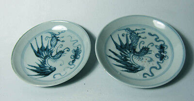 Two 19th cent. Qing  blue and white plate (pheonix motif)
