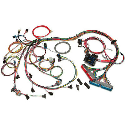 Painless Performance Products 60508 EFI Wiring Harness 1999-2002 GM LS1/LS6