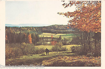 Postcard: Autumn Colours, Baerum, near Oslo, Norway (1950s)