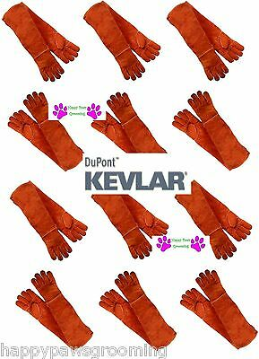 12 PAIR LONG ARM PET DOG CAT BIRD REPTILE KEVLAR LEATHER Animal Handling Gloves