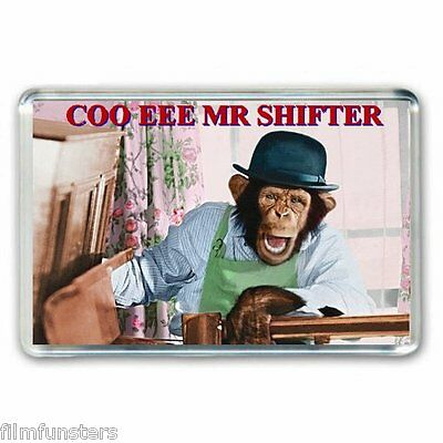 70's RETRO NOSTALGIA - PG TIPS MONKEY - MR SHIFTER -JUMBO FRIDGE MAGNET