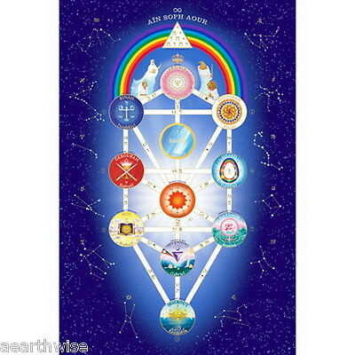 UNIVERSAL TREE OF LIFE POSTER 610 x 406 mm Wicca Pagan Witch Kabbalah
