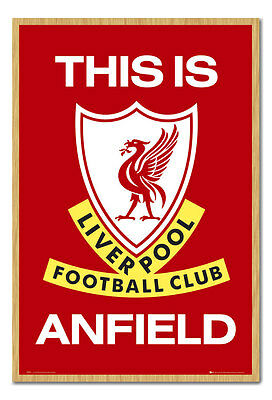 Liverpool FC Poster This Is Anfield Beech Framed Ready To Hang Frame Free P&P