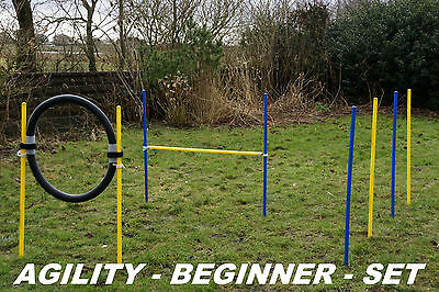 AGILITY - BEGINNER - SET in blau / gelb