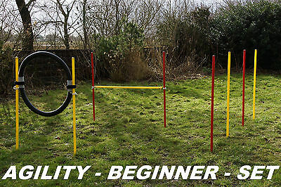Agility - Beginner - Set  Verschiedene Farbvariationen / Original Wuzzmann