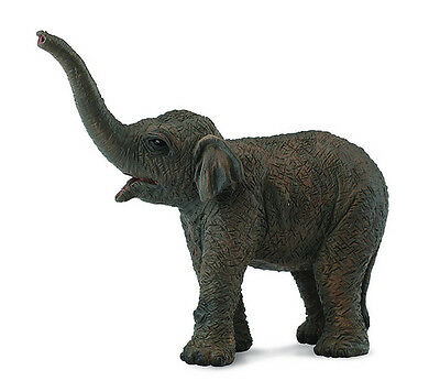 CollectA 88487 Asian Elephant Calf Wildlife Figurine Toy Model Replica - NIP