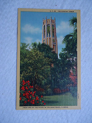 THE SINGING TOWER ONE OF THE PATHS  SANCTUARY  FL UNUSED  VINTAGE POSTCARD