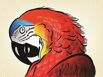 ANIMAL PHOTO PAINTING MACAW PARROT GIANT POSTER WALL ART PRINT LLF0011