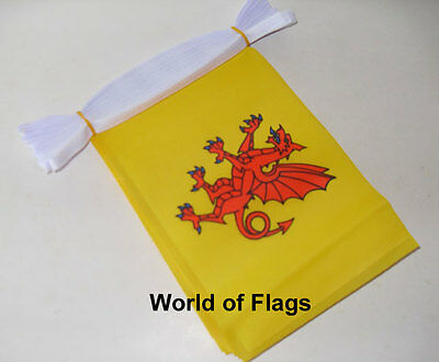 SOMERSET FLAG BUNTING 9m 30 Fabric Party Flags England English County