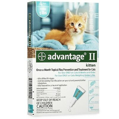 4 MONTH Advantage II Flea Control Small KITTENfor Cats under 5 lbs. TEAL