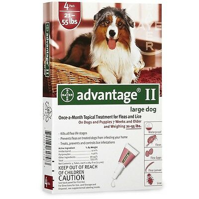 4 MONTH Advantage II Flea Control RED for Dogs 2155 lbs