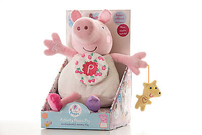 Rainbow Designs ACTIVITY PEPPA PIG Toy/Fun Animals Toddler/Child BN