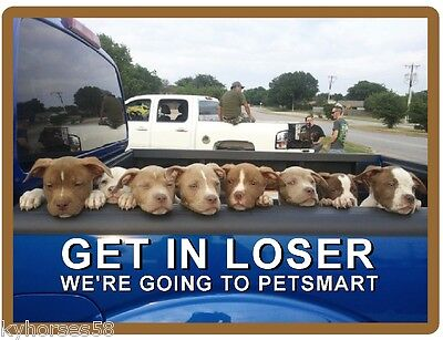 Funny Dog Humor Pitbull Terrier Losers Refrigerator Magnet