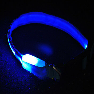M Size Adjustable Flash Blue LED Lights Pets Dog Night Safety Cool New Collar