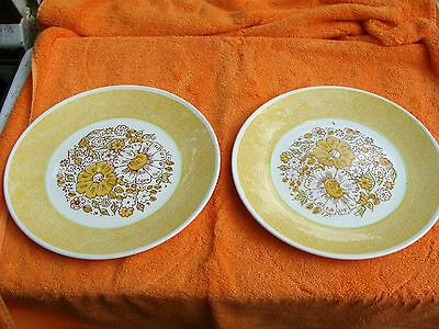 (2)Taylor Smith & Taylor TS&T YELLOW NOSEGAY Dinner Plates 10 1/4'' DISCONTINUED