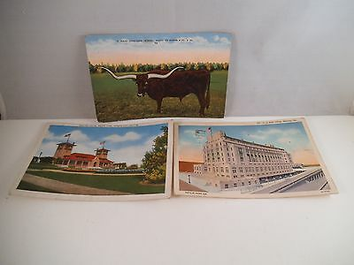 Vintage Lot of 3 Postcards Shelter House Texas Longhorn US Post Office