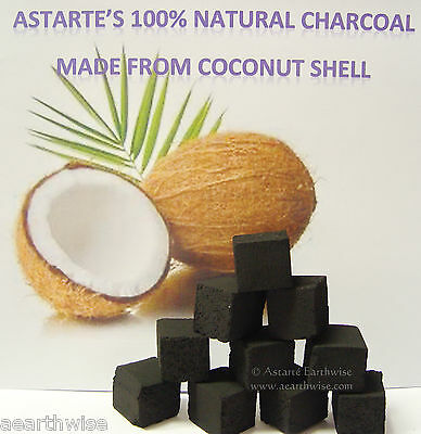 COCONUT CHARCOAL 100% NATURAL - 10 BLOCKS Wicca Pagan Witch Goth CHARCOAL BRICKS