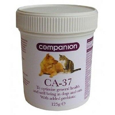 COMPANION CA-37 dog puppy cat kitten canine probiotic supplement 125g healthy